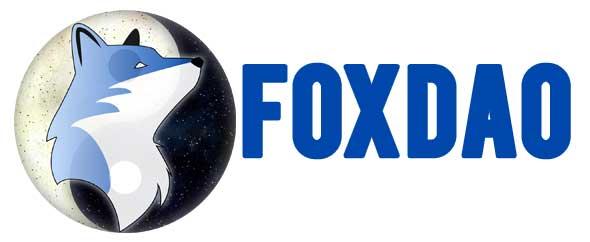 Fox profil themeforest