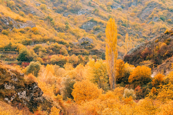 Ateni, Shida Kartli Region, Georgia. Beautiful Autumn Landscape - Stock Photo - Images