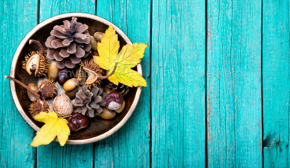 symbolic autumn Ikebana - Stock Photo - Images