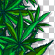 Cannabis Frames - VideoHive Item for Sale