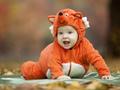 Baby boy dressed in fox costume