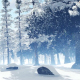 Beautiful Snowy Jungle - VideoHive Item for Sale
