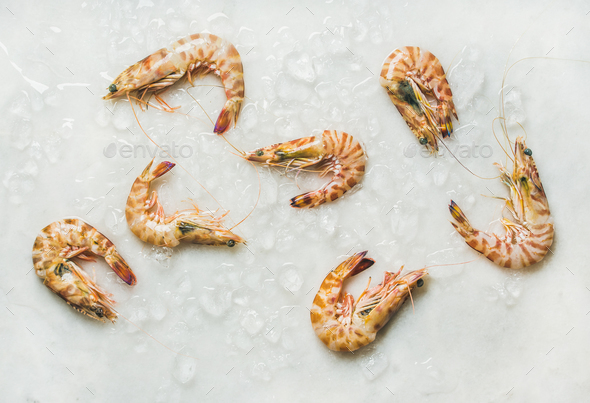 Raw tiger prawns on chipped ice over light grey background - Stock Photo - Images