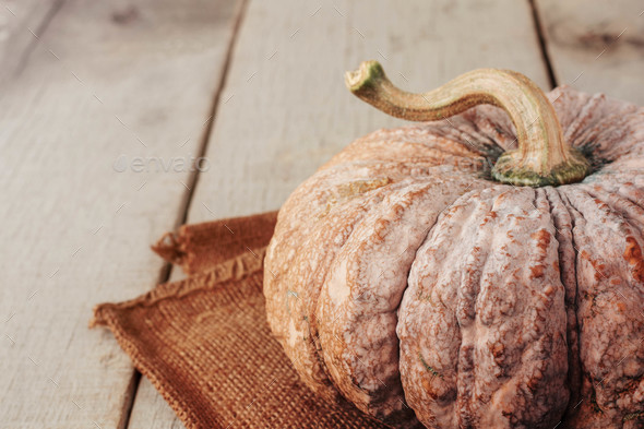 Pumpkin on wood table - Stock Photo - Images