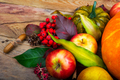 Harvest background with apples, rowan berries, green squash