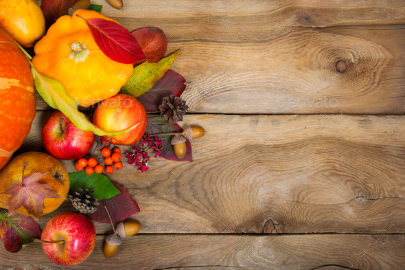 Thanksgiving background with yellow squash, apples, rowan and ac - Stock Photo - Images