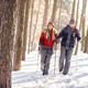 Woman and man in winter walking with sticks in wood - PhotoDune Item for Sale