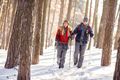 Woman and man in winter walking with sticks in wood
