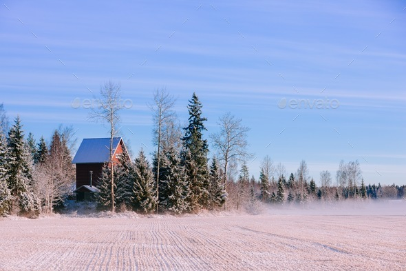 Morning winter landscape. Snow trees and frosty fog on the field. - Stock Photo - Images