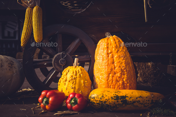 Autumn harvest. Vintage cart full with freshly picked vegetables - Stock Photo - Images