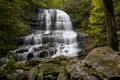 Pearsons Falls, North Carolina