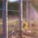 Wire Wooden Fence - PhotoDune Item for Sale