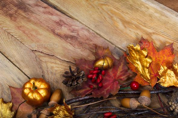 Thanksgiving golden pumpkin, acorn and oak leaves decor, copy sp - Stock Photo - Images