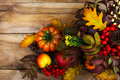 Fall arrangement with rowanberry and oak leaves, copy space - PhotoDune Item for Sale