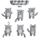 Vector Set of Tabby Cat Characters. Set 5
