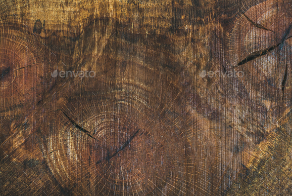 Texture saw cut of the wood logs - Stock Photo - Images