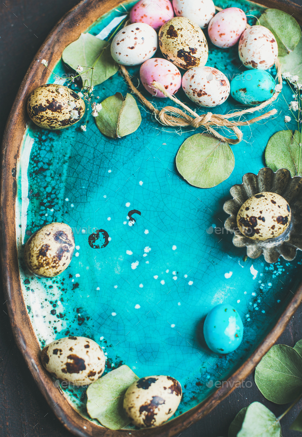 Colorful quail eggs, flowers, leaves for Easter over blue tray - Stock Photo - Images