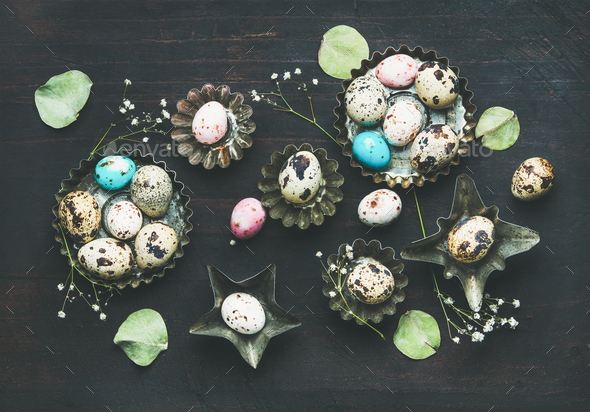 Colorful quail eggs, dried wild flowers and leaves, Easter holiday - Stock Photo - Images