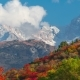 of the Mountain Autumn Landscape with Colorful Forest and High Peaks - VideoHive Item for Sale