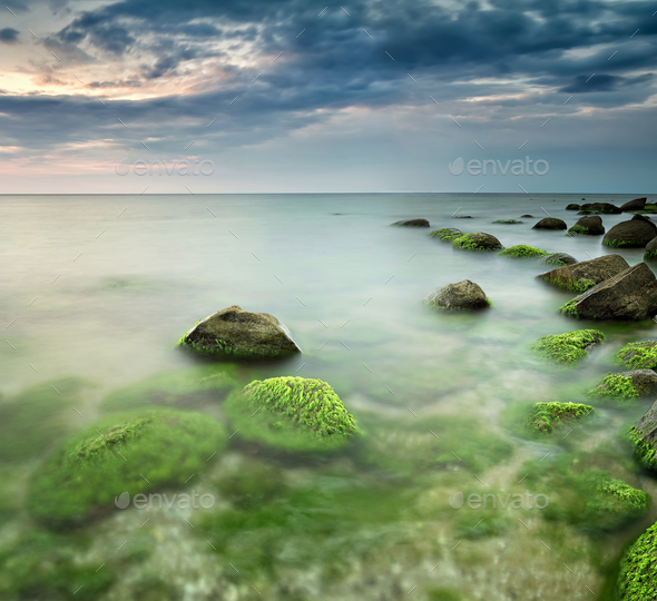 Green sea at sunrise - Stock Photo - Images