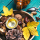 Herbal Autumn Tea - PhotoDune Item for Sale