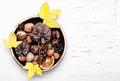 symbolic autumn Ikebana - PhotoDune Item for Sale
