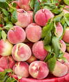 Fresh peaches an a local market - PhotoDune Item for Sale