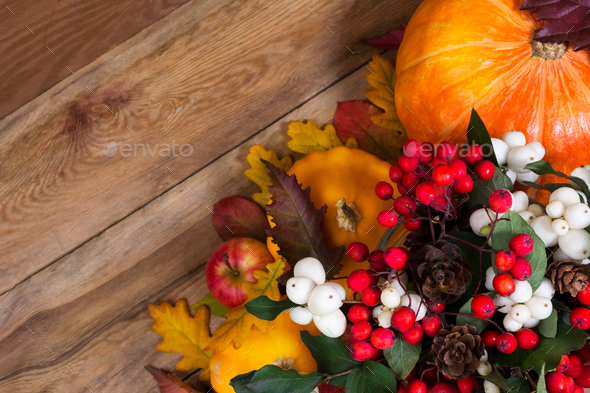 Thanksgiving background with ghostberry, rowan, pumpkin, copy sp - Stock Photo - Images
