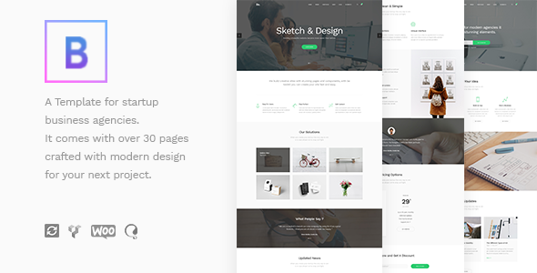 Image of BoTheme - Startup Business WordPress Theme