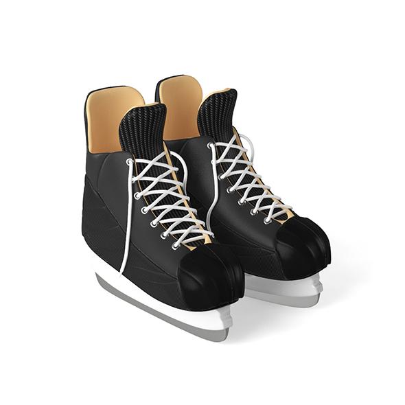 3DOcean Skates 20834938