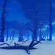Dead Forest in Winter - VideoHive Item for Sale
