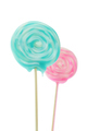Close up of Lollipop isolated on white - PhotoDune Item for Sale