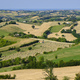 Summer landscape in Marches near Barchi - PhotoDune Item for Sale