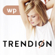 Trendion | Personal Lifestyle Blog and Magazine - ThemeForest Item for Sale