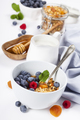 Healthy breakfast -  Homemade granola, honey, milk and berries - PhotoDune Item for Sale