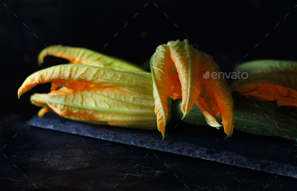 Zucchini  with flowers - Stock Photo - Images