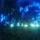 Tropical Jungle at Night - VideoHive Item for Sale