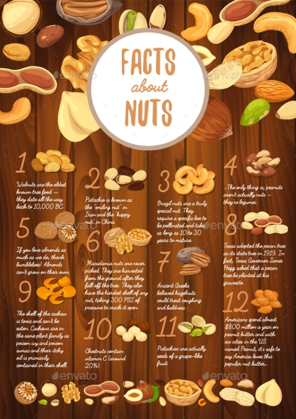 Facts About Nuts on Wooden Board with Kernel - Food Objects