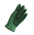 Green winter glove isolated