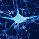 Neuron Network - VideoHive Item for Sale
