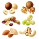 Different Nuts Realistic Vector Set - GraphicRiver Item for Sale