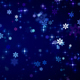 Glittering Christmas Night - VideoHive Item for Sale
