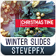 Winter Slides - VideoHive Item for Sale