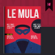 Le Mula Finance Magazine Template