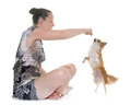 chihuahua and woman - PhotoDune Item for Sale