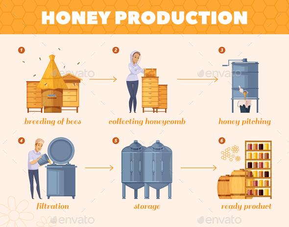 Honey Production Process Cartoon Flowchart - Food Objects