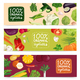 Organic Vegetables Horizontal Banners