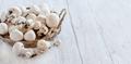 Champignon Mushrooms  on a table - PhotoDune Item for Sale