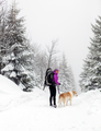 Happy woman walking in winter forest with dog - PhotoDune Item for Sale