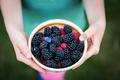 Fresh berries - PhotoDune Item for Sale